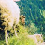 Peter mit Schaf