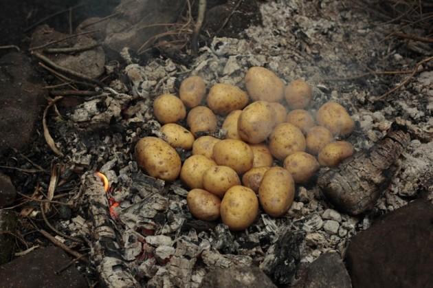 tn_Kartoffeln